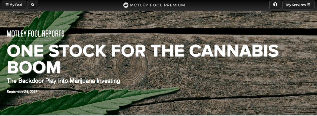Motley Fool Special Report
